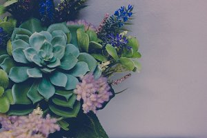Succulents Bouquet II
