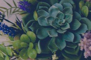 Succulents Bouquet III