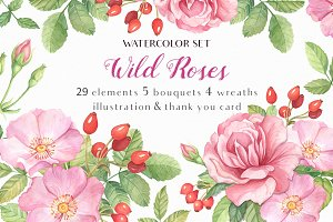 -40% OFF - Wild Roses Watercolor Set