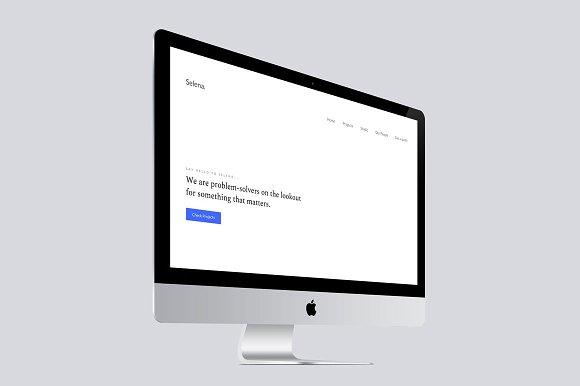 Selena Portfolio HTML Template