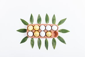 tray with yellow eggs