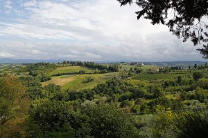 Landscape in the Tuscany, Italy