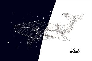 whale, constellation, graphics