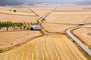 aerial view of fields.jpg