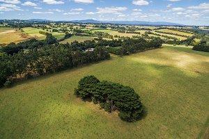 Green fields aerial landscape