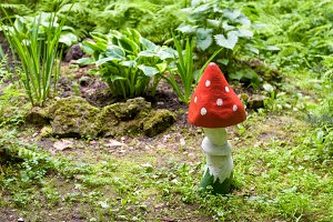 Landscaping with a wooden mushroom