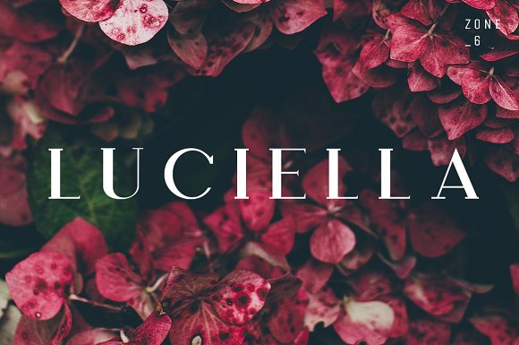 Luciella A Poetic Font Family