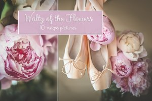 Waltz of flowers / 10 magic pictures