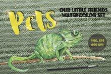 PETS. Watercolor set