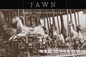Fawn Lightroom Preset