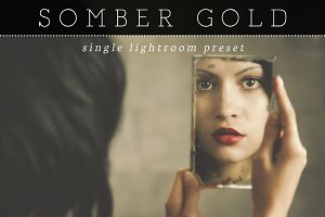 Somber Gold Lightroom Preset