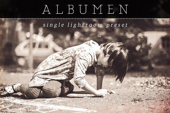 Albumen Toned Lightroom Preset