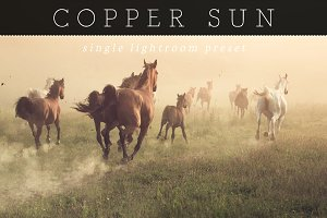 Copper Sunlight Lightroom Preset