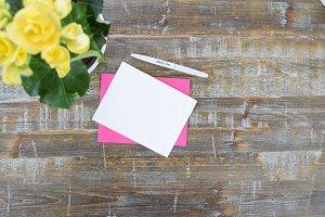 Spring Notecards