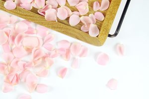 Rosette petals with wood tray