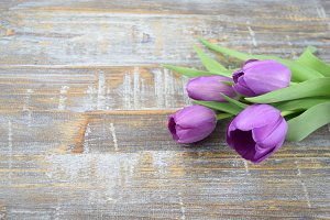Purple tulips on rustic wood table