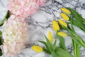Pink hydrangea and yellow tulips
