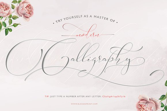 Absolutely Adorable Sophia Script Fonts Creative Market