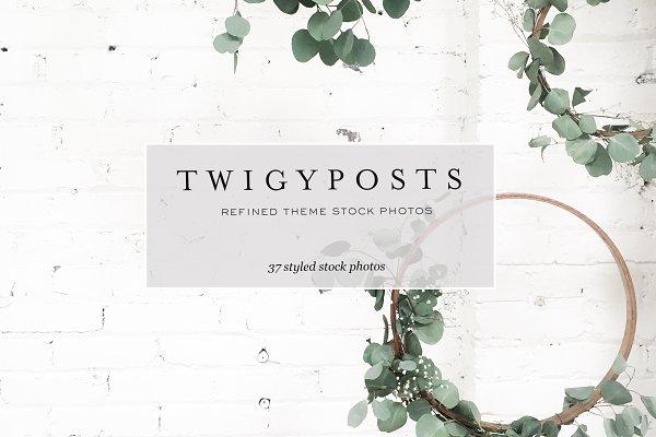 Stock Photos for Wordpress Themes