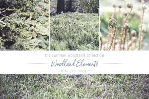 Summer Woodland ~ Elements Set