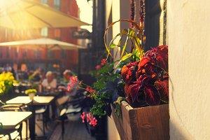 Summer city restaurant at sunset