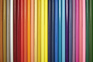 Many different colored pencils on white