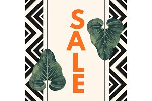 Sale poster with two Alocasia Zulu Mask leaves