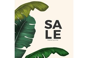 Sale tropical summer poster with jungle leaves isolated on white