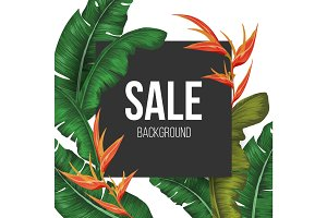 Sale background vector illustration with tropical plants