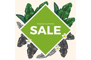 Summer sale with tropical palm leaves and white Plumeria flowers