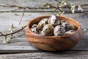 Bowl of quail eggs with blossom bran