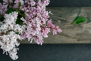 High angle view on a lilac flowers on a table