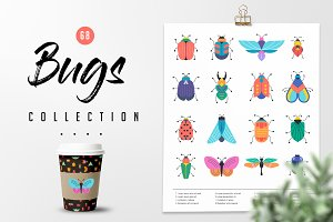 Bugs and insects collection