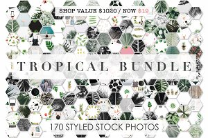 98% OFF | Tropical Bundle | 170 IN 1