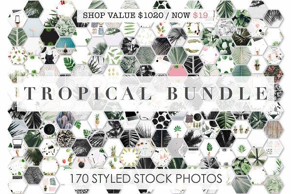 98% OFF | Tropical Bundle | 170 IN…