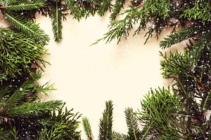 Christmas background. Coniferous branches lie in a circle. Toned