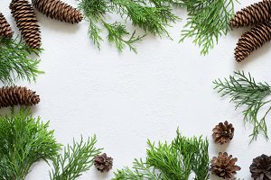 Christmas background. Frame made of natural coniferous branches