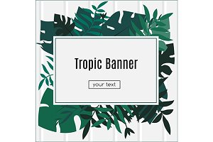 Banner with tropic leaves. vector