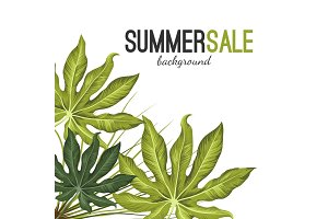 Summer sale background with green tropical exotic foliage isolated on white.