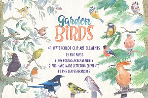 Garden birds watercolor clipart