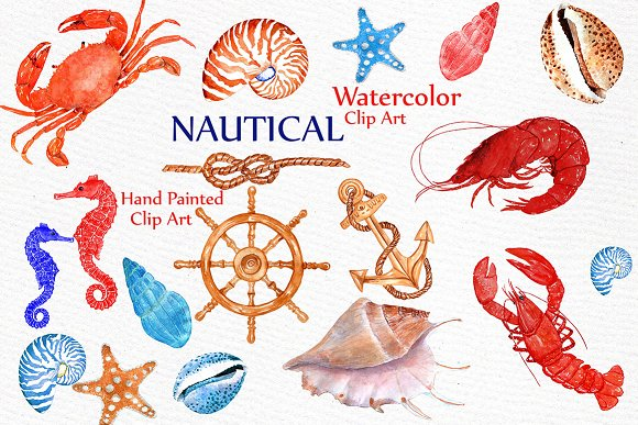 Seashell Nautical Watercolor Clipart