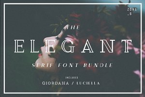 The Elegant Serif Font Bundle