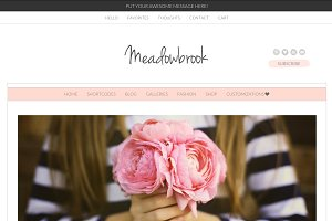 Meadowbrook - Modern Wordpress Theme
