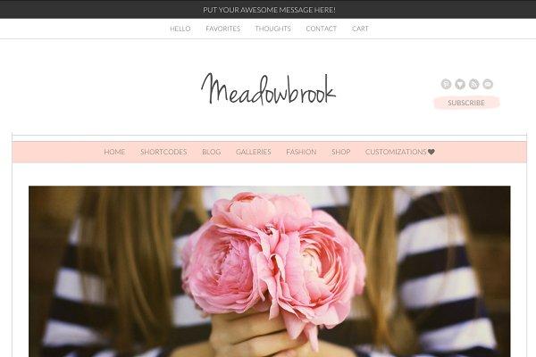 Meadowbrook - Modern Wordpress Them…