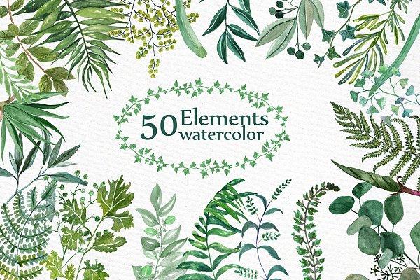 Watercolor Ferns Clipart