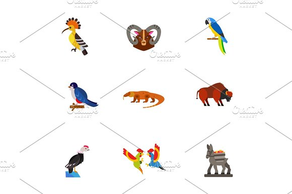 Birds And Animals Icon Set