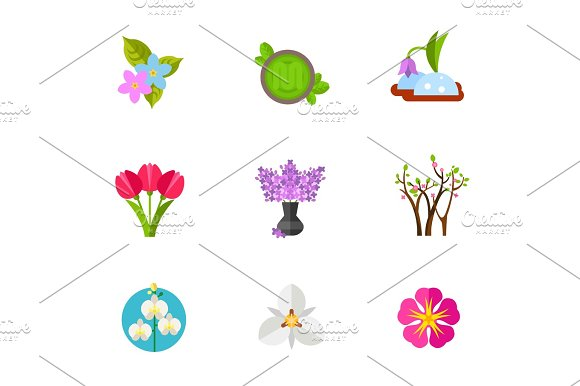 Blooming Flower Icon Set