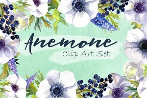 Watercolor Anemone Flowers Clipart