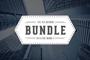 5 in 1 Resume/CV Bundle With MS Word