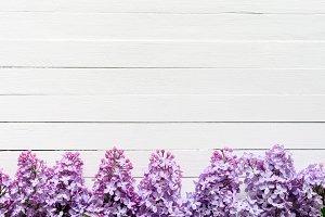 Lilacs frame